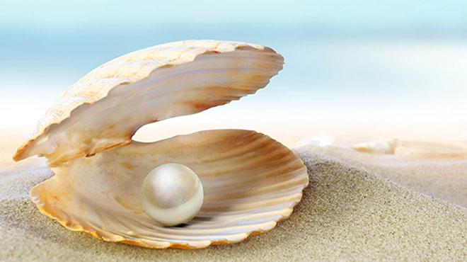 汉方美容-珍珠粉面膜